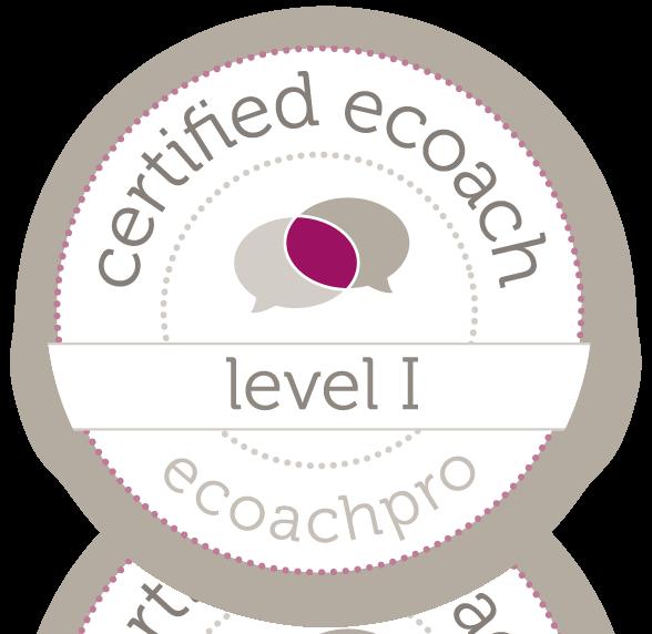 Certified E-coach